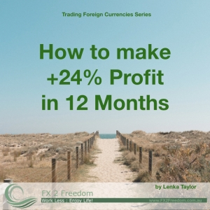How to make 24% profit in 12 months trading foreign currencies